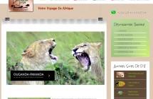 Destination Jungle safaris