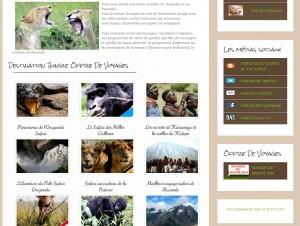 destination jungle french site
